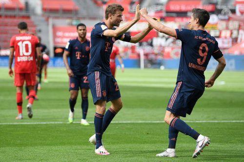 Gegen Gladbach gesperrt, gegen Frankfurt dabei, das Duo Lewandowski/Müller.afp
