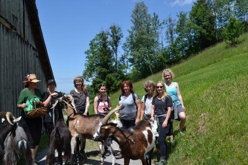 Gemeinsam mit Barbara Bilz und fünf Ziegenböcken ging es für die Teilnehmer auf Kräutersuche. BI