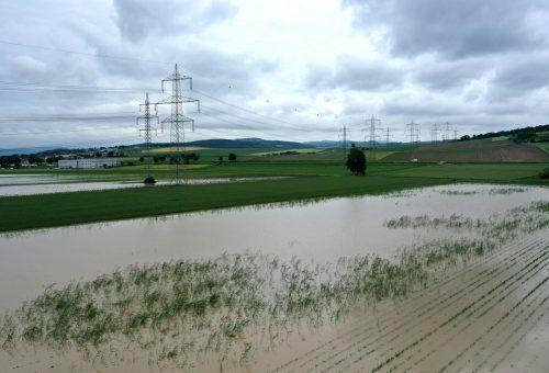 In Loosdorf standen am Montag noch Felder unter Wasser.APA