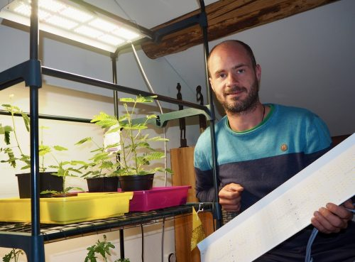 Julian Klehenz setzt auf LED-Technologie für den heimischen Obst- und Gartenbau. RAL