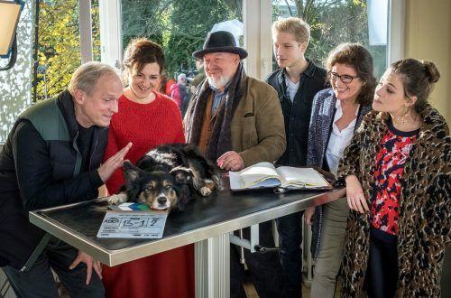 """Ulrich Tukur und Martina Gedeck spielen in """"Und wer nimmt den Hund?"""" das Ehepaar Lehnert, das sich auseinandergelebt hat. ARD Degeto/Laewen"""