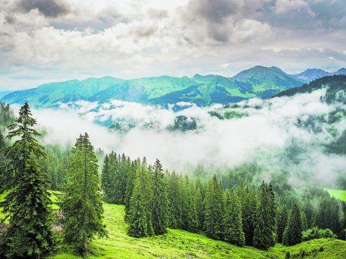 Wie in Watte gepackt: Das Kleinwalsertal.Denger/Vorarlberg Tourismus