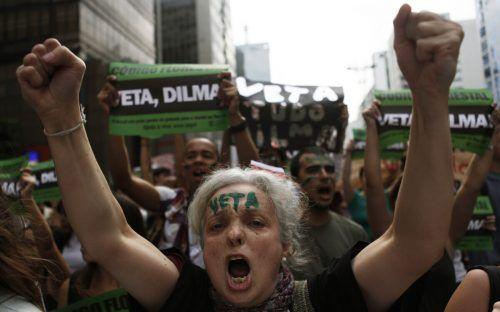 Immer mehr Umweltschützer bezahlen ihren Einsatz mit dem Leben. Reuters