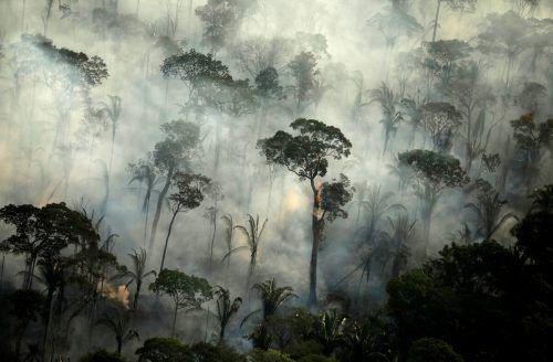Insgesamt wurden mehr als 10.000 Brände gezählt. Reuters