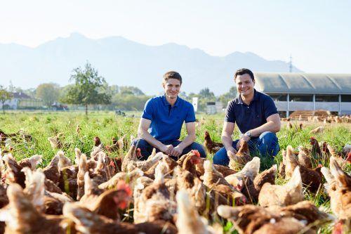 """Johannes und Mathias Allgäuer vom Sennhof in Rankweil inmitten ihrer """"glücklichen Hühner"""". Die Bio-Eier werden in ihrem Lädele verkauft.VN/steurer"""