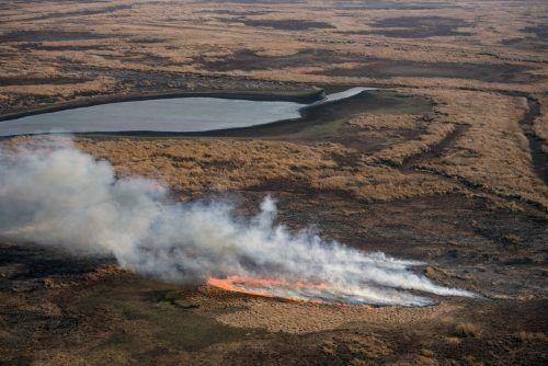 530 Quadratkilometer argentinisches Marschland wurden zerstört. Die Brände bedrohen die große Artenvielfalt des Deltas. AFP