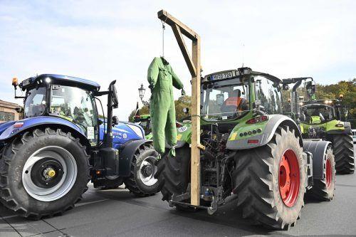 Auch Landwirtschaftsvertreter demonstrieren gegen das Verbot. AFP
