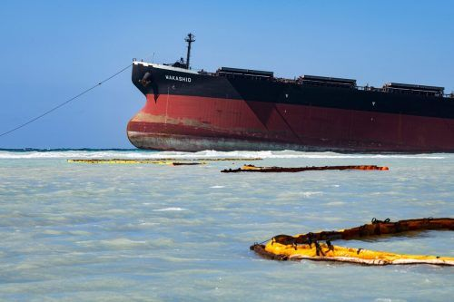 Barrieren sollen das Naturschutzgebiet vor Öl schützen. AFP