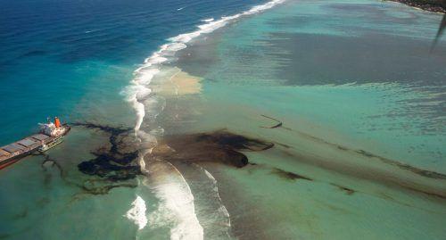 Der Inselstaat im Indischen Ozean rief einen Umwelt-Notstand aus. REuters