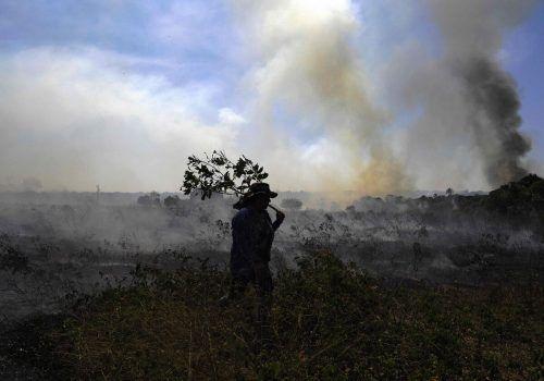 Die Brände seien im Juli im Vergleich zum Juli 2019 um 28 Prozent zurückgegangen. AFP