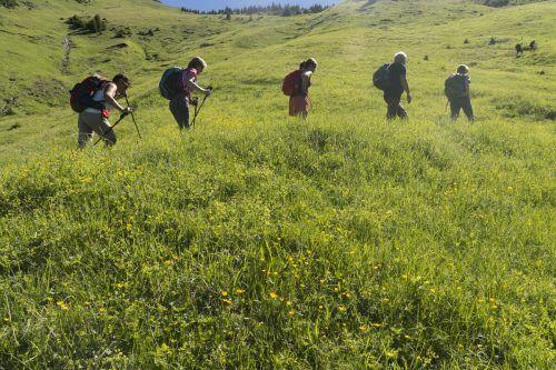 Die Naturfreunde-Bewegung steht für leistbare Freizeitaktivitäten und den schonenden Umgang mit der Natur.Brandt