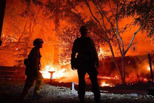 Feuerwehren kämpfen in Boulder Creek gegen die Flammen.AP