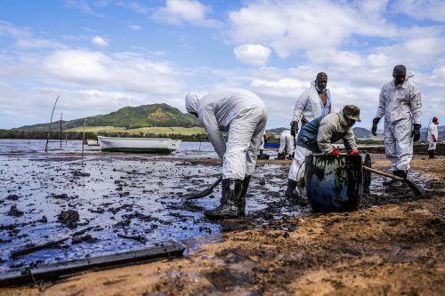 Freiwillige Helfer reinigen die Küste von dem ausgelaufenen Öl. AFP