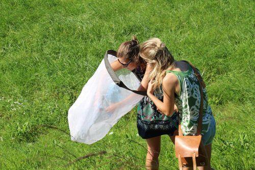 Konni und Conny bei der Ortung seltener Insekten.