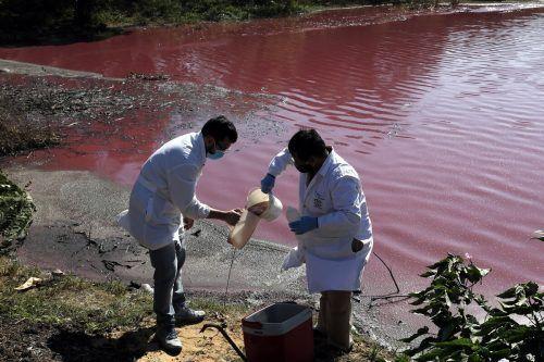 Labortechniker Francisco Ferreire (l.) untersuchte das lilafarbene Wasser. Ap