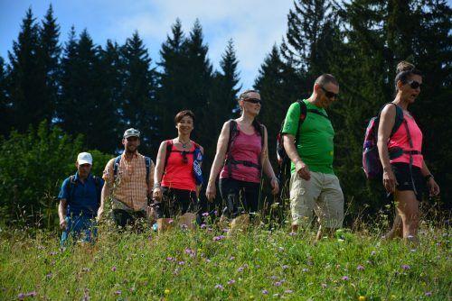Lockerer Vereinsausflug: Die Lauftreffmitglieder liefen zur ersten Etappe der Alt-Ems-Challenge auf den Schlossberg. mima