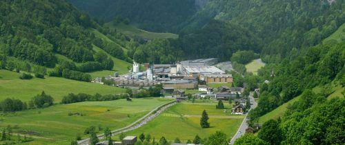 Mayr-Melnhof investiert in den Standort Reuthe und will noch heuer mit dem Bau neuer Trockenkammern beginnen. Berchtold