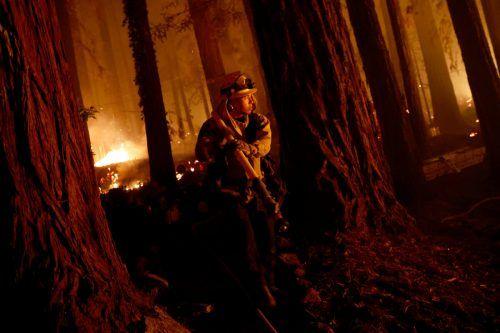 Mehr als 10.000 Feuerwehrleute kämpfen gegen zwei Dutzend Großbrände. RTS