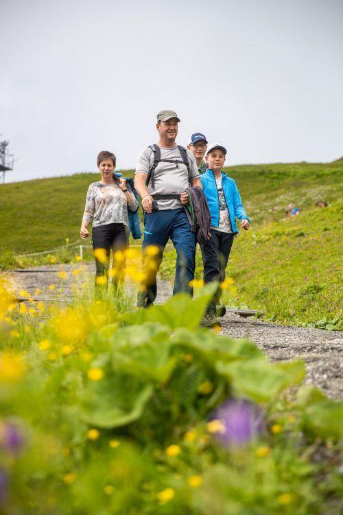 Obwohl das Wetter alles andere als strahlend schön war, kamen die Bergfreunde in großer Zahl zur VN-Erlebenswanderung auf den Diedamskopf.vn/sams