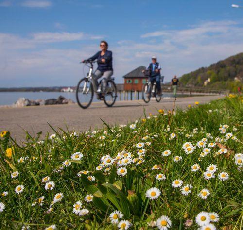 Radfahren macht Spaß und hält außerdem noch rundum fit. vn/paulitsch