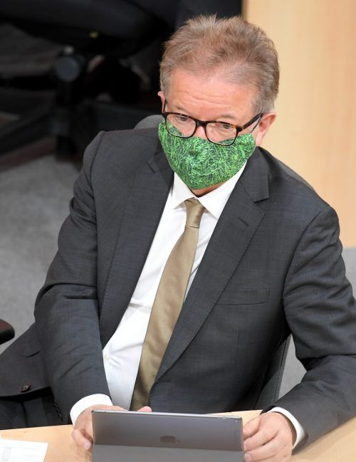 Am Sonntag wurde ein Abänderungsantrag von ÖVP und Grüne zum Gesetzesentwurf von Gesundheitsminister Anschober in Umlauf gebracht.APA