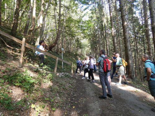 Bei der Exkursion wurden die Naturschätze zwischen Montikel und Rungelin in Augenschein genommen.stadt