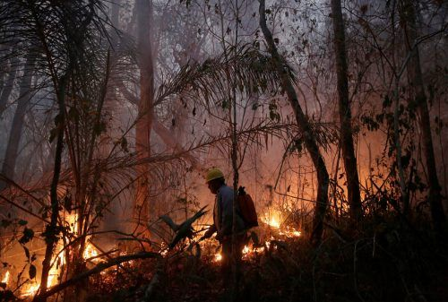 Das Feuer im Schutzgebiet Copaibo hat über 20.000 Hektar Wald zerstört. Rts