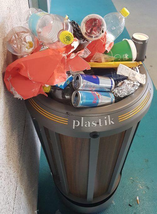 Der Plastikmüll wachse Österreich über den Kopf, sagen Umweltschützer.APA