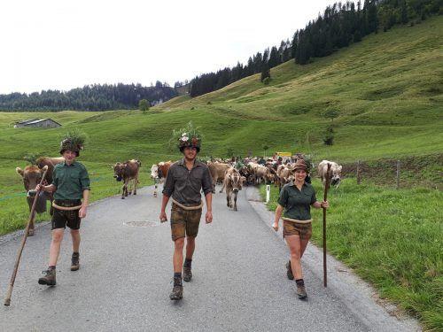 Die Alphirten ziehen mit ihren Rindern wieder ins Tal.