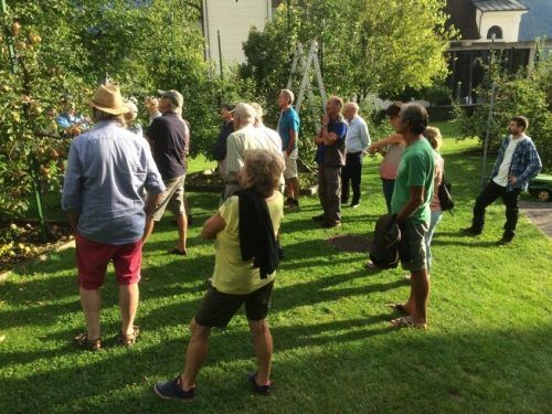 Die Teilnehmer des Sommerschnittkurses zeigten sich sehr interessiert.OGV Nüziders