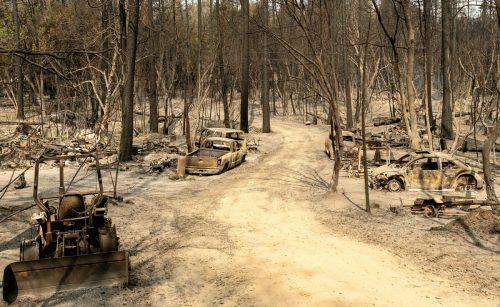 Dort, wo das große Feuer in der Region Berry Creek bereits wütete, ist nichts als verbrannte Erde. AFP