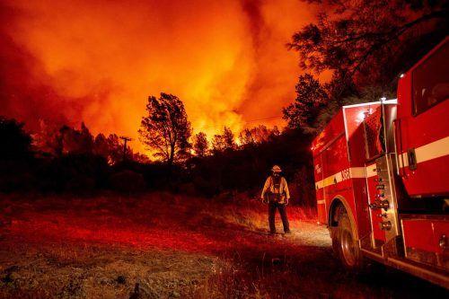 Eine Fläche von mehr als 8000 Quadratkilometern ist bereits zerstört worden. AFP