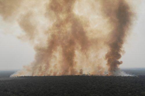 Im August wurden 29.307 Brände im Amazonasgebiet gezählt. Reuters