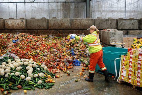 In der EU gehen 88 Millionen Tonnen an Lebensmitteln verloren oder werden weggeworfen. Dies verursacht bis zu 16 Prozent der Emissionen in der EU-Lebensmittelkette. Reuters