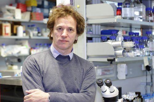 Josef Penninger und seine Kollegen arbeiten an einem Weg, dem Coronavirus den Zugang zu unseren Zellen zu versperren.