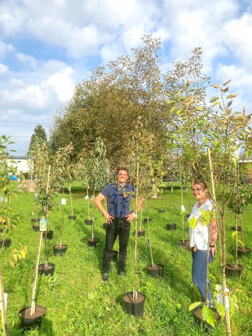 KLAR!-Regionssprecher Bürgermeister Thomas Schierle und die neue KLAR!-Managerin Julie Buschbaum mit neu zu pflanzenden Bäumen.plan b