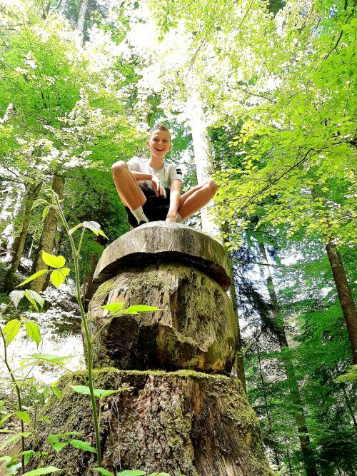 Lucca Gutschi machte auf dem Walderlebnispfad Möggers die Erfahrung, dass sich Gott in allen Dingen entdecken lässt.