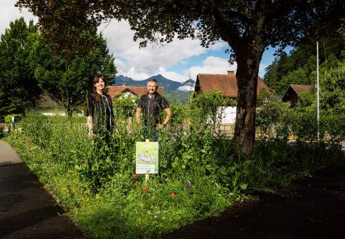 Mit arten- und blütenreichen Flächen werden im Stadtgebiet Lebensräume für heimische Pflanzen und Tiere gefördert. E5/Gmeiner