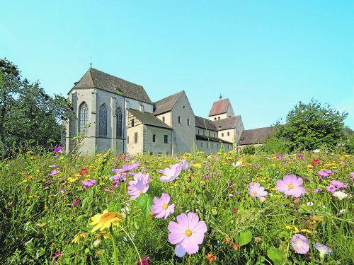 Mitten im westlichen Bodensee liegt die berühmte Welterbe-Insel Reichenau – eine Insel für die Seele.theo keller