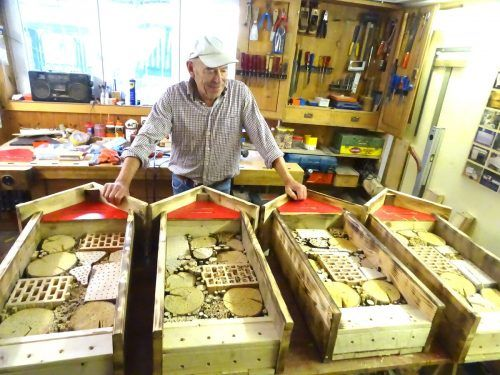Rudolf Nenning hat in seiner Werkstatt 15 Insektenhotels gebaut. tf