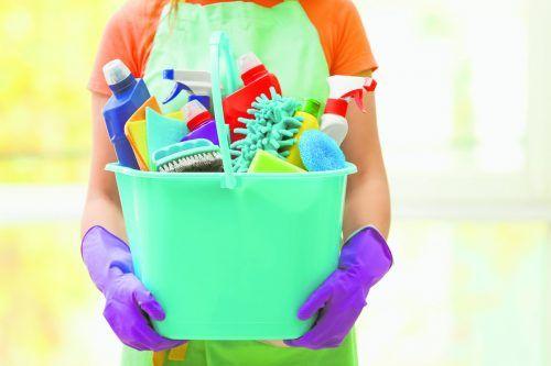 Schädlinge und ihre Eier sollten durch Reinigen sorgfältig entfernt werden.Shutterstock