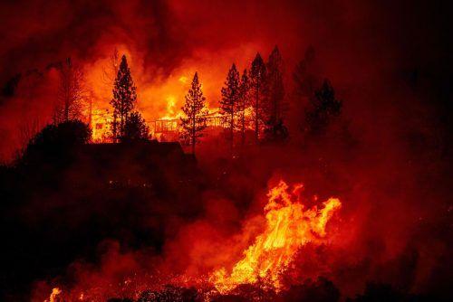 Schon wieder lodern die Flammen. Verheerende Waldbrände halten den US-Staat Kalifornien seit Wochen auf Trab. AFP