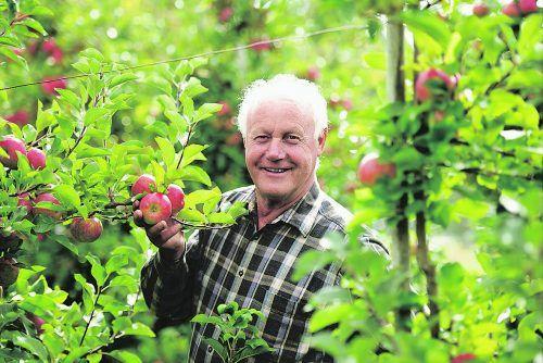 Spezialist für beste Apfelkulturen – natürlich gesund: Manfred Nägele, Gaißau.