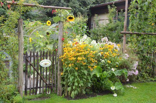 Wie wir unsere Hausgärten noch umweltfreundlicher machen können.Harald Rammel