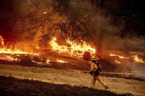 Auch zerstörerische Waldbrände durch anhaltende Hitzeperioden kommen immer häufiger vor. ap