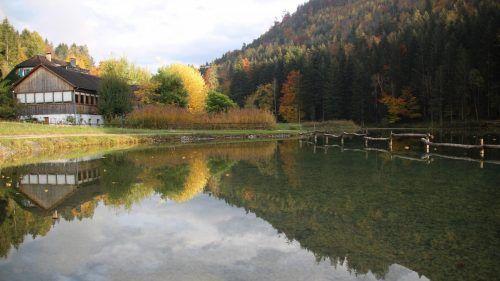 Der neue Wald-Wissens-Weg beim Fallersee ist mit und ohne Führung erkundenswert. Heilmann