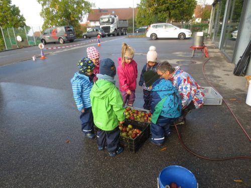 Die Äpfel hatten die Kinder zuvor beim Pfarrhof selbst gesammelt.