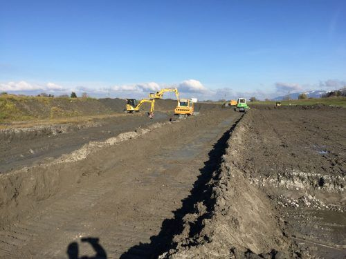 Die Arbeiten sollen die Abflusskapazität des Rheins sicherstellen.Gemeinde