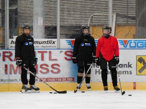 Die Jugendmannschaft des Schlittschuhclubs steht jetzt wieder auf dem Eis, um sich auf die Saison vorzubereiten.mima