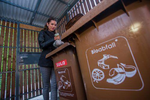Die neuen biologisch abbaubaren Bioabfallsäcke haben ihre Tücken. Sie reißen gerne. Jetzt hat der Umweltverband ein stärkeres Modell herausgebracht.  VN/Steurer